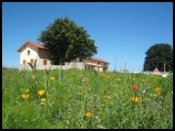 vue-jachere-fleurie-et-maison-1600x1200.jpg
